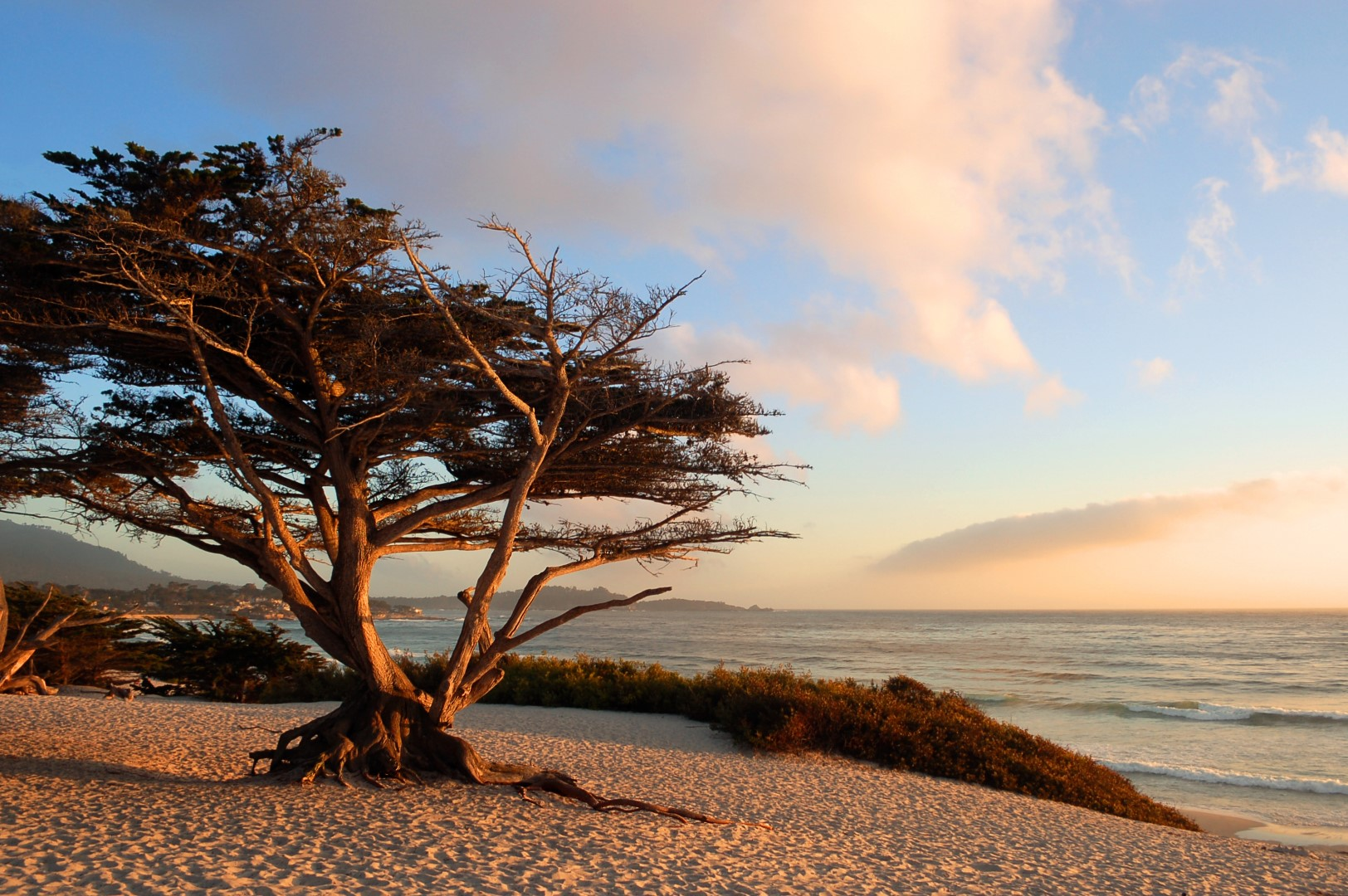 hotels in Monterey