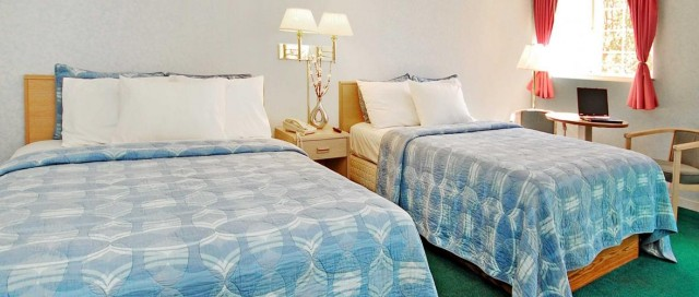 2 Queen Bed Room can host 4 adults