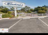 Bluebird Inn Cambria Virtual Tour
