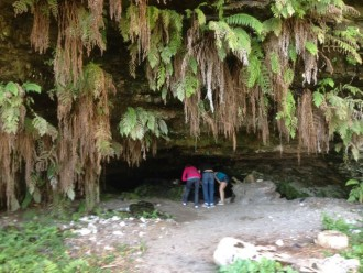 Fern cave hike 10 miles N.