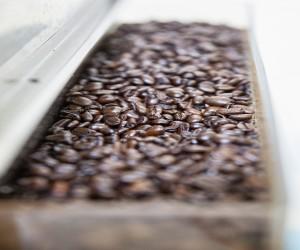 Minna Hotel SF - Coffee Beans