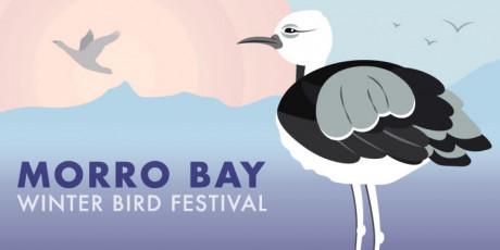 Winter Bird Festival