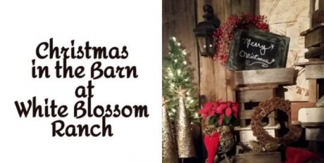 Christmas in the Barn at White Blossom Ranch