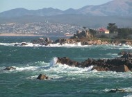 Pacific Grove Attractions